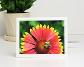 Garden Photography Note Card, Bee on Gaillardia 'Dazzler' Blanket Flower, summer bright red yellow green