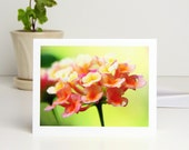 Lantana Flower Photography Note Card, bright yellow orange pink lime green floral stationery all occasion blank card