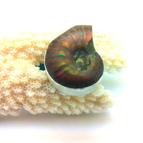 Nautilus Shell Cocktail Ring- Size 7