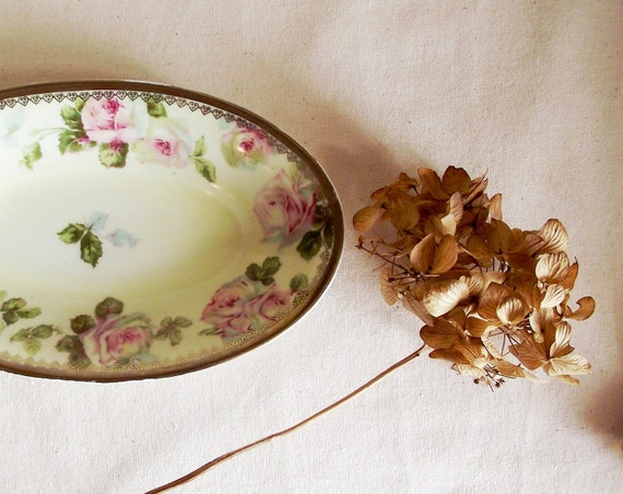 Antique Old Ivory OHME Silesia Pretty Little Roses Relish Dish
