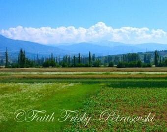 Fields of Macedonia 8x10 photograph