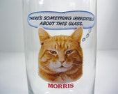 Morris The Cat Drinking Glasses (2)
