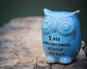 Blue owl decor  - make me smile on robins egg