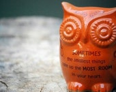 Owl home decor with Winnie the pooh quote on orange   - handmade pottery.