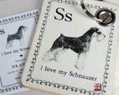 i love my Schnauzer Key Chain
