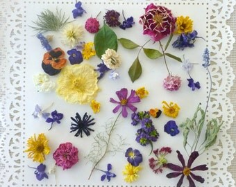 Wedding Flowers, Confetti, Dried  Flowers, Flower Girl, Table Decor, Decorations, Receptions, Flowers, Dry Flowers, Gift, 100 Real Flowers
