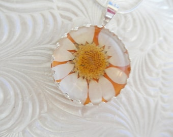 He Loves Me-Loves Me Not-White Daisy Atop Pearlized Yellow-Real Pressed Flower Crown Bezel Pendant Beneath Glass-Symbolizes Innocence