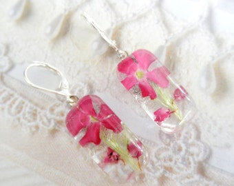 Enchanted in Pink-Pink Verbena and Pink Heather Pressed Flower Glass Rectangle Domed Earrings-Symbolizes Enchantment, Admiration
