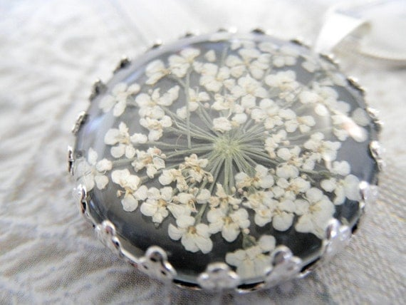 Classic Snowflake Queen Anne's Lace Pendant Beneath Glass Atop Black Background Pressed Flower Crown Pendant-Symbolizes Peace