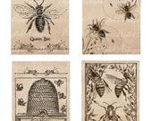 Abeilles Vintage Images imprimables téléchargement numérique