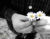 Photography Print 6x9 A Little Flower