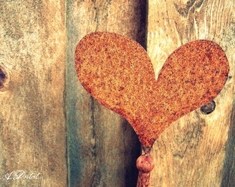 Photography Print Rusty Heart
