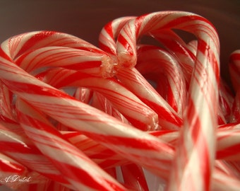Photography Print 8x10 Candy Cane Heart