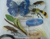 BUTTERFLY INSECT JAR Jolee's Boutique 3d Scrapbooking  stickers -Butterflies, Bugs