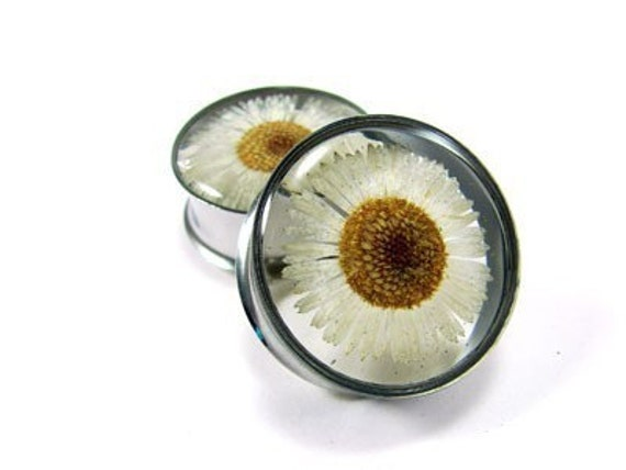 Embedded Daisy Flower Plugs gauges - 7/8, 1, 1-1/8, 1-1/4 inch