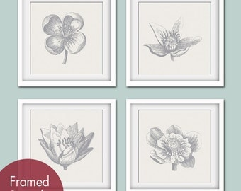 Botanical Flower Bud (Series A) Set of 4- Square Art Poster Prints (Featured in Pale French Grey and Dolphin Grey) Personalized Colors