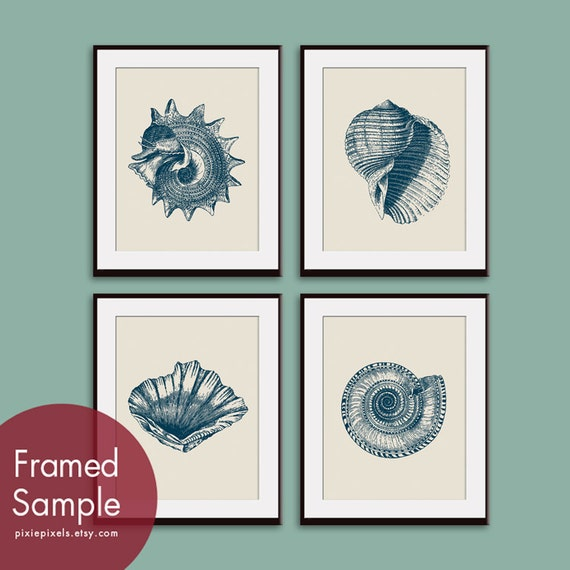 Underwater Sea Shell Collection (Series A) - Set of 4 - Art Prints - Featured in Pale French Grey and Navy