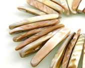 29 Cream Shells Mother of Pearl Sticks
