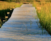 Fine Art Nature Photography,  Landscape, Boardwalk, Tidal Marsh,11X14 Wall Mount, Wall Art, Shelf Art, Ready to Hang