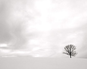 Winter Landscape Photography, Negative Space, Minimalist Wall Art, 16X20 Mat, Black and White, Lone Tree, Ready to Frame