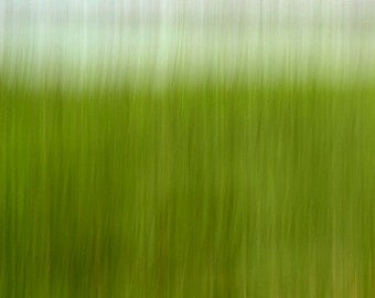 Green Grass, Abstract Photograph,16X24 Wall Mount, Nursery Art, Wall Hanging, Bright Color, Ready to Hang
