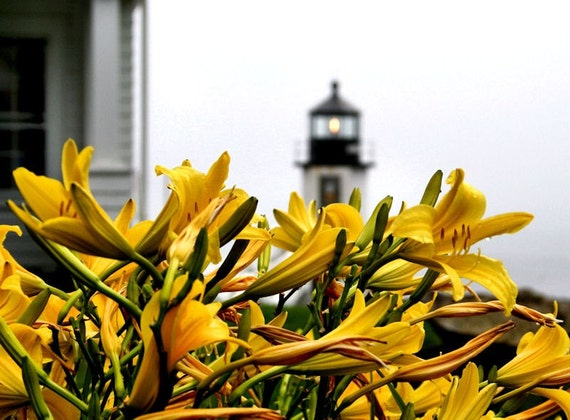 Lighthouse and Flowers, Yellow Lilies, Fine Art Photography, Nature, 11X14 Mat,  Nautical Wall Art, Ready to Frame,  Landscape