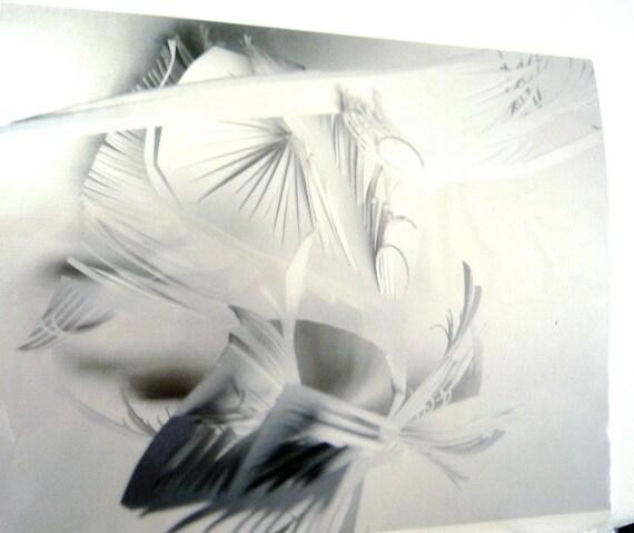 white on white- Hanging Sculpture Art Print - 8 x 10 modern metallic photograph