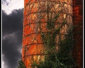 Photography-Vine covered Silo
