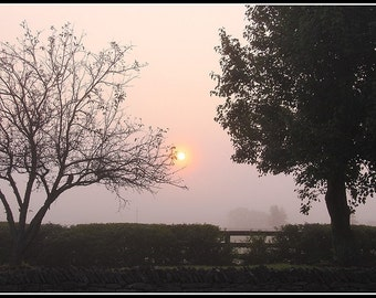 Photography-Morning Fog on East Hickman in Nicholasvile Kentucky
