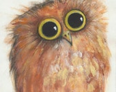His Lil' Bro - Wee Morepork - Little New Zealand Owl - Painting