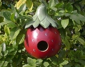 Hand Painted Strawberry Gourd Birdhouse