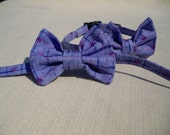 Cat Bow Tie Collar With Breakaway Buckle