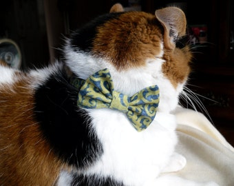 Spring Breakaway Cat Collar