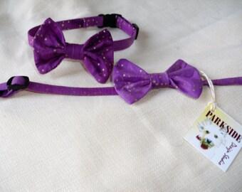 Breakaway Bow Tie Collar for Cats