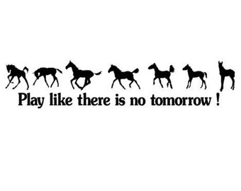 Horse decal, quote wall sticker, wall words, girls room pony decal, childs room decor, nursery wall decal, baby room, 28 X 5 inches,124-HQ