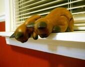 Curious Wooden Shelf-Hanger Kitties - Set of 2