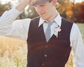 The Beau- men's black gingham necktie- 16 available gingham colors