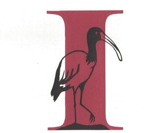 I is for Ibis - Print from original papercut art