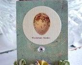 Small Bird Nest Egg Matchboxes-FREE SHIPPING- Set of 3