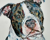 "Pitbull print 11"" x 14"" dog puppy small art print limited Edition signed"
