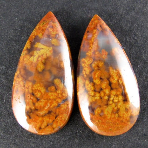 25% OFF: Woodward Ranch Plume  Agate Designer Cabochon