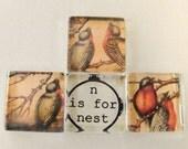 Nesting Birds - Square Glass Tile Magnets or Thumbtacks