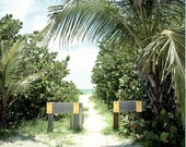 Custom Listing for Pamela: Beach Pathway, Travel Photography, Boca Grande, Beach, Home/Office Art