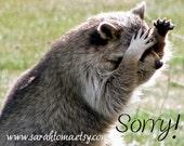 SALE Raccoon Sorry Blank Photography Card