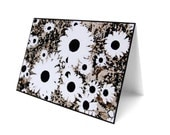 Black and white funky daisies blank photography print card
