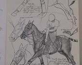 vintage equestrian drawing book HORSES