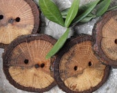 4 Rustic and Charming Oak Tree-Branch Buttons - 1 7/8 inches x 1 3/4 inches, 2 holes, Perfect for Journals, Decorative Pillows, Favor and Gift Boxes, Knitting and Sewing