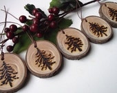 5 Rustic Wood Burned Spruce Wood Tree Branch Gift Tags/Ornaments - A perfect embellishment for gift bags and boxes, baked goods, and more