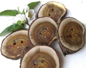Wooden Buttons - 5 Rustic Ohio Wood Tree Branch Buttons with Bark - 2 1/8 x 1 3/4 inches, 2 holes, For Journals, Pillows, Handbags, Knitting