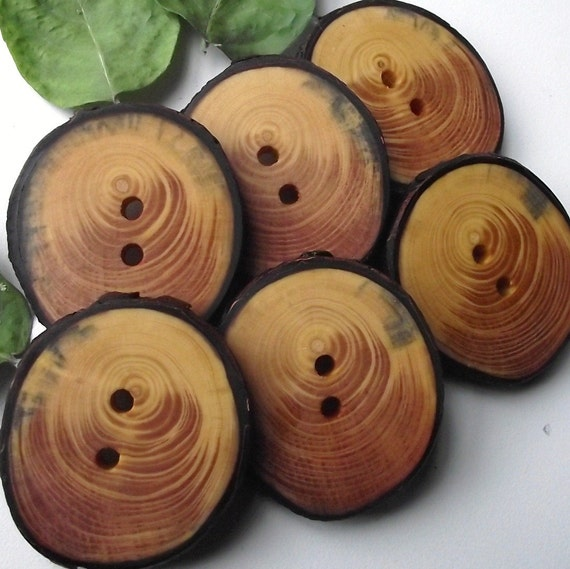 Wooden Buttons - 6 Spruce Wood Tree Branch Buttons with Bark - 1 7/8 x 1 3/4 inches, 2 holes, For Journals, Pillows, Handbags, Knitting